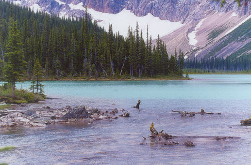 Picture of Cavell Lake
