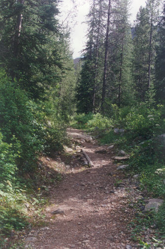 Picture of Ross Lake trail