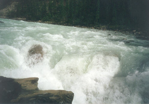 Picture of Sunwapta Falls