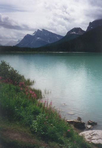 Picture of Waterfowl Lake