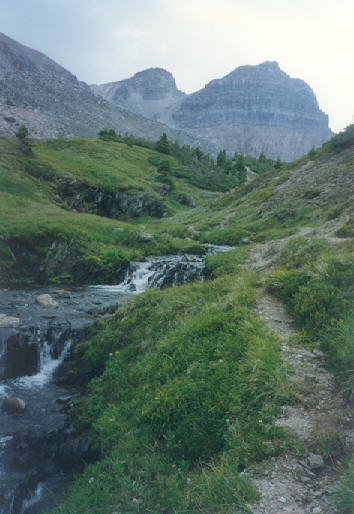 Picture of Helen Lake trail
