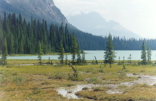Picture of Emerald Lake