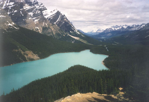 Picture of Peyto Lake