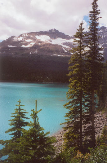 Picture of Lake O'Hara