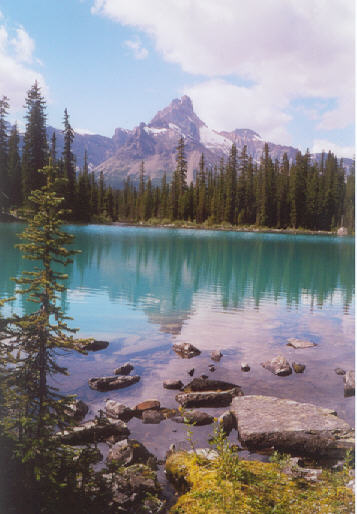 Picture of Little Lake O'Hara