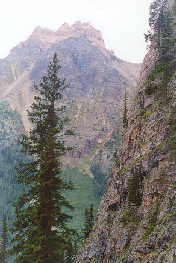 Picture of Opabin Plateau trail